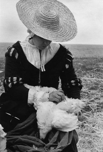 Kvinna som plockar en höna